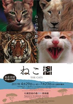 岩合光昭写真展 THE CATS ねこ科 ねこは野生動物だ。
