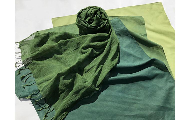 草木染め「重ね染めで緑を染める」【体験・学び】
