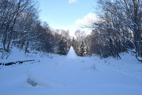 冬の隠された庭への道