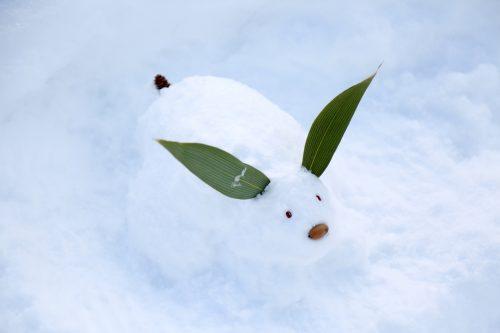 雪うさぎを作ろうのイメージ図