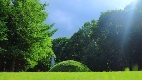 芸森『夏模様』コース:菅生優様