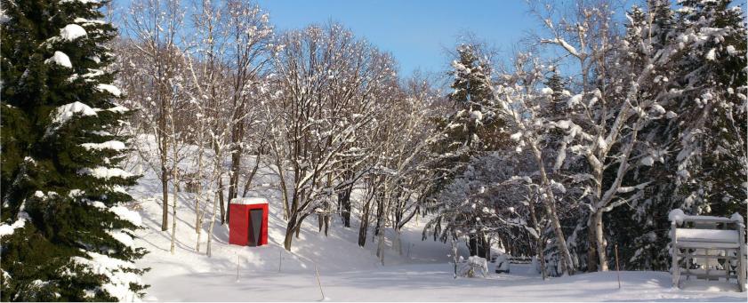 冬の野外美術館の写真