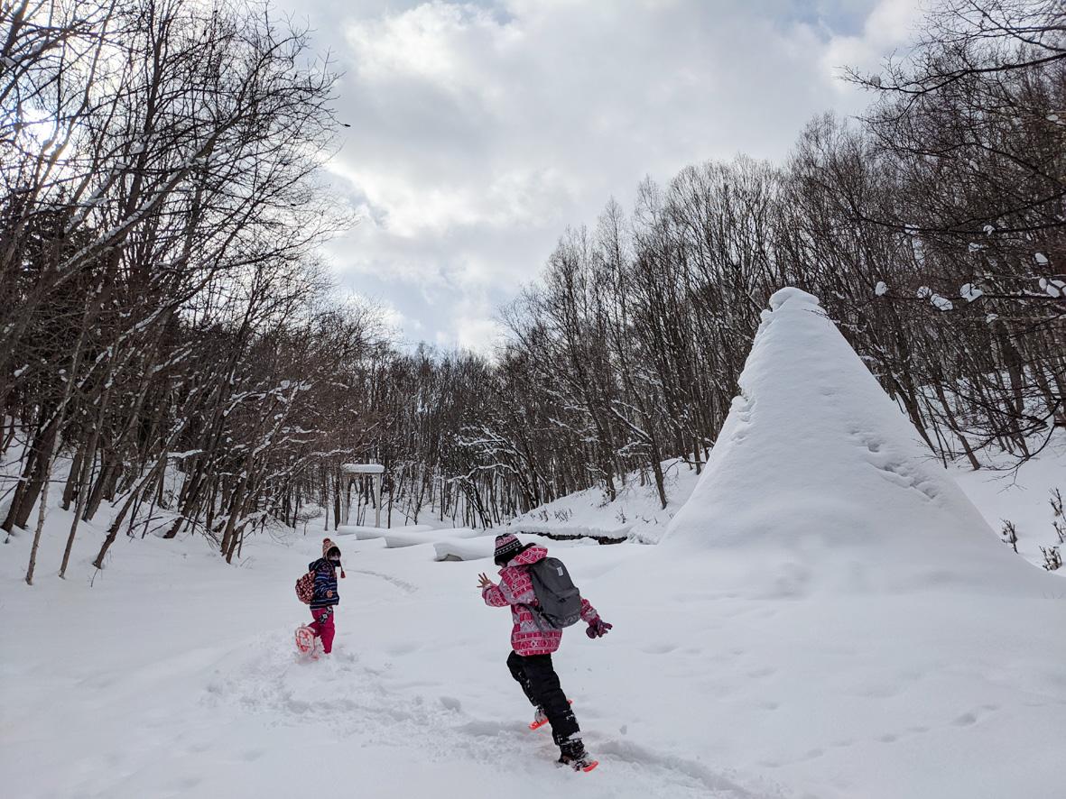 芸森フォトコンテスト2021冬:かんじきウォークコースグランプリ写真