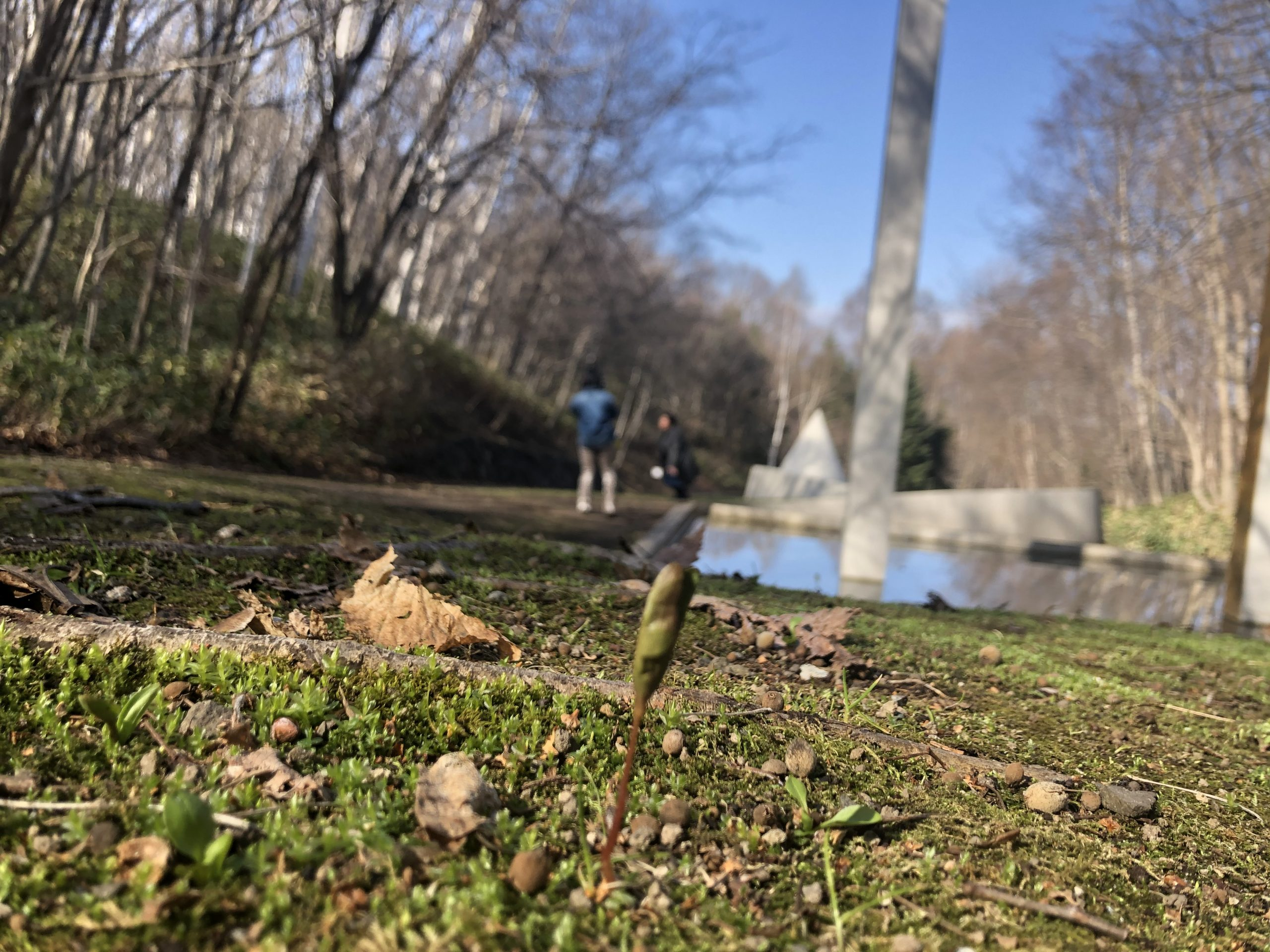 春めく芸森写真2